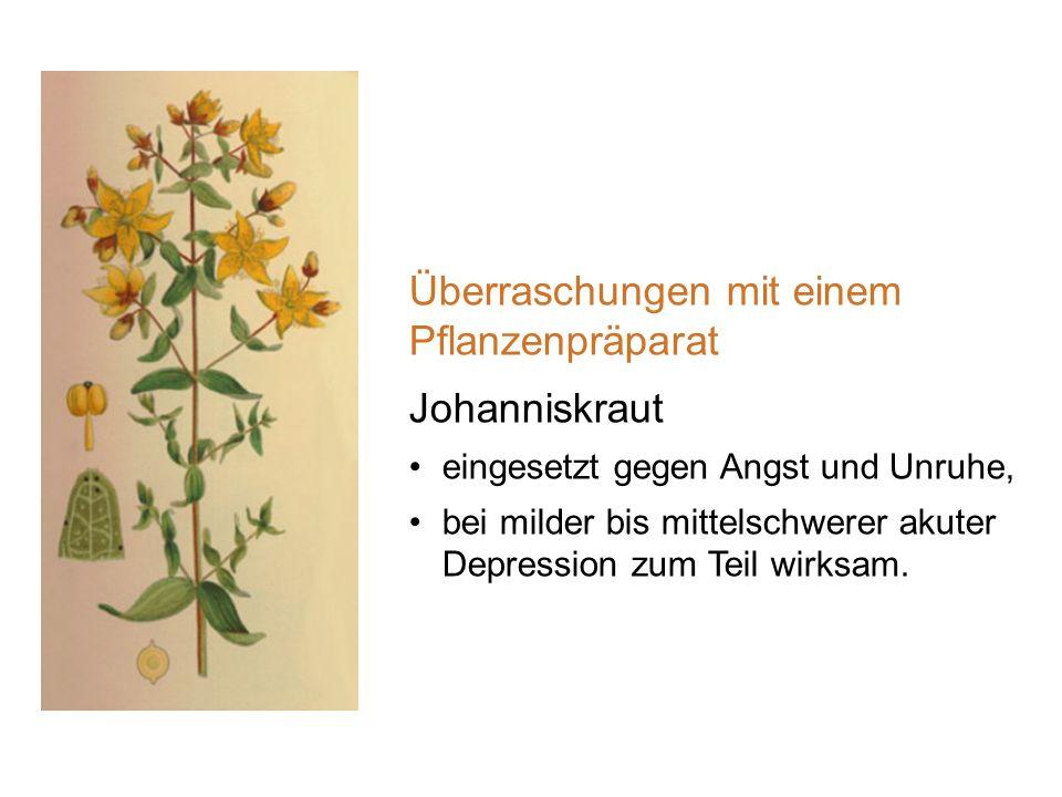 Überraschungen mit einem Pflanzenpräparat Johanniskraut