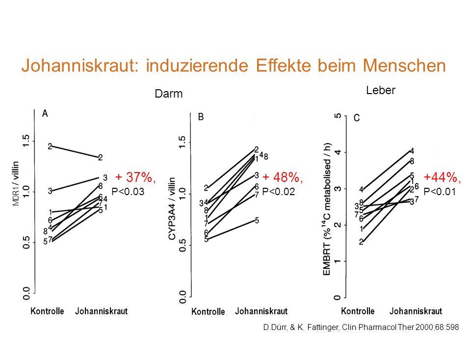 Johanniskraut: induzierende Effekte beim Menschen