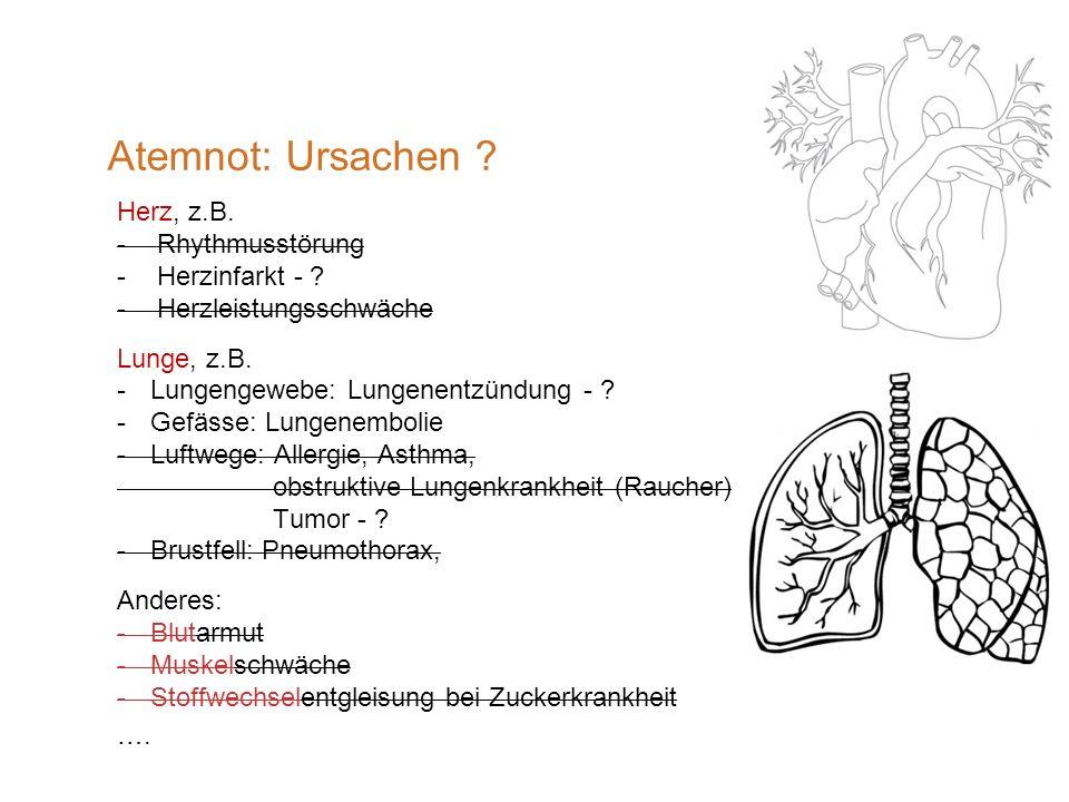 Atemnot: Ursachen Herz, z.B. Rhythmusstörung Herzinfarkt -
