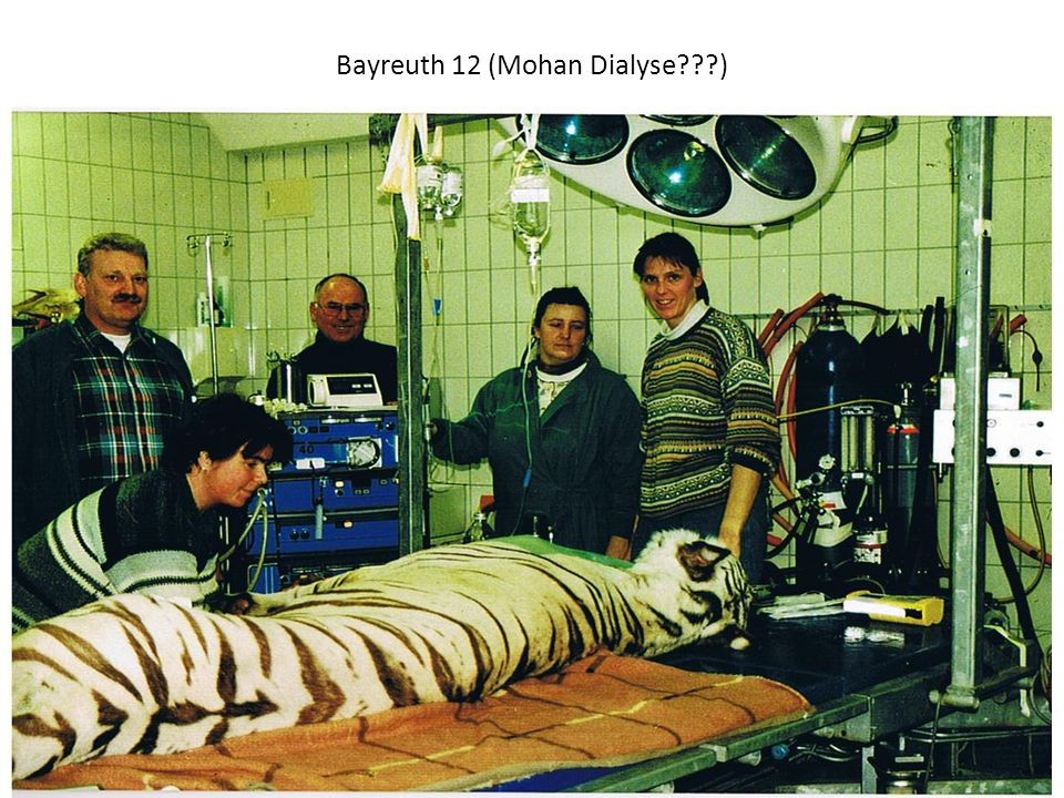 Bayreuth 12 (Mohan Dialyse )