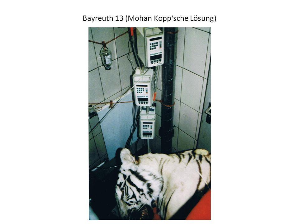 Bayreuth 13 (Mohan Kopp'sche Lösung)