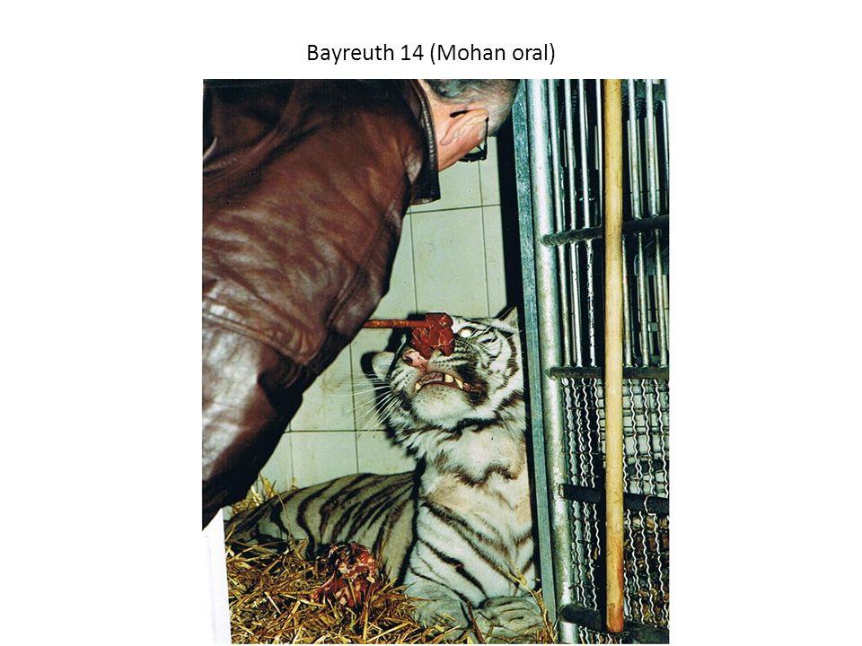 Bayreuth 14 (Mohan oral) Danach konnte auf die ORALE Bikarbonatgabe übergegangen werden.