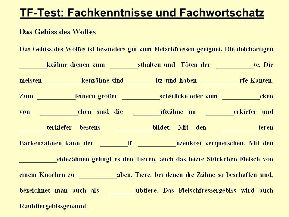 TF-Test: Fachkenntnisse und Fachwortschatz