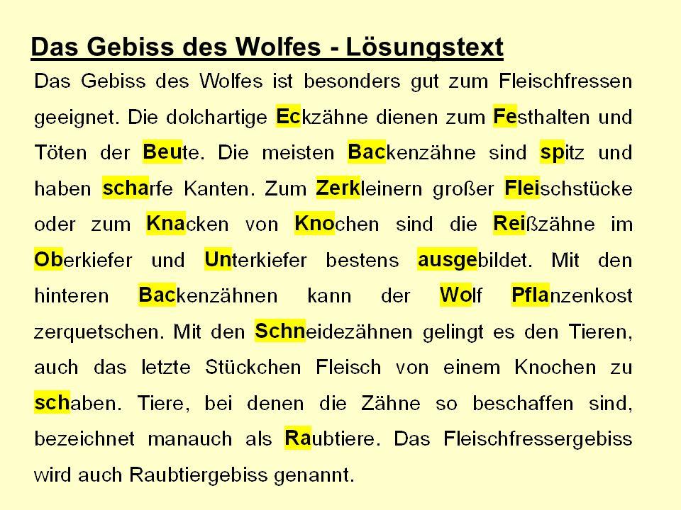 Das Gebiss des Wolfes - Lösungstext