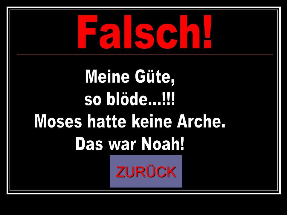 Moses hatte keine Arche.