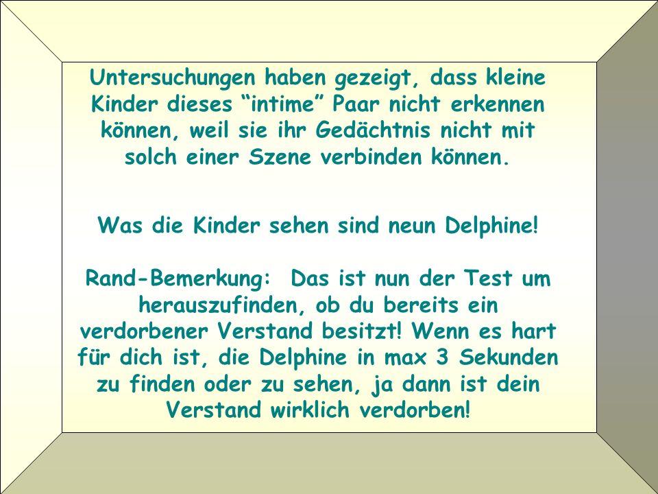 Was die Kinder sehen sind neun Delphine!