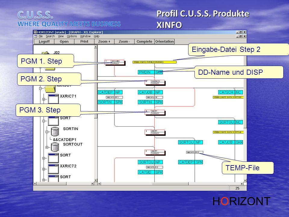 HORIZONT Profil C.U.S.S. Produkte XINFO Eingabe-Datei Step 2