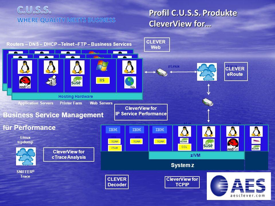 Profil C.U.S.S. Produkte CleverView for… Business Service Management