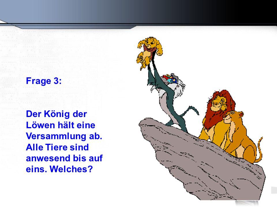 Frage 3: Der König der. Löwen hält eine Versammlung ab.
