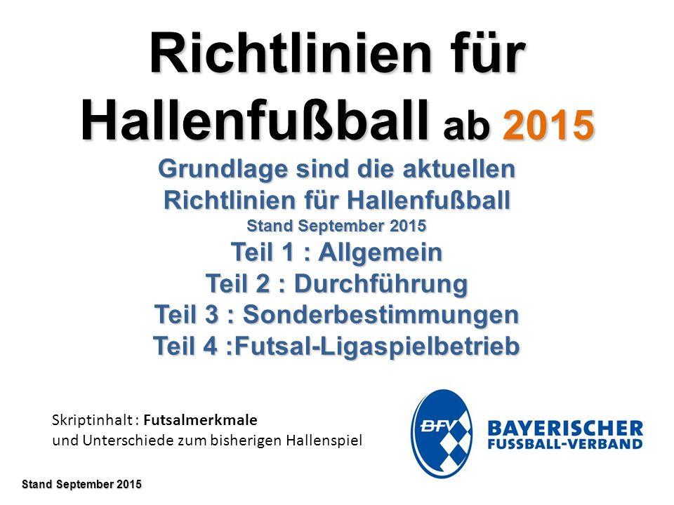 Richtlinien für Hallenfußball ab 2015