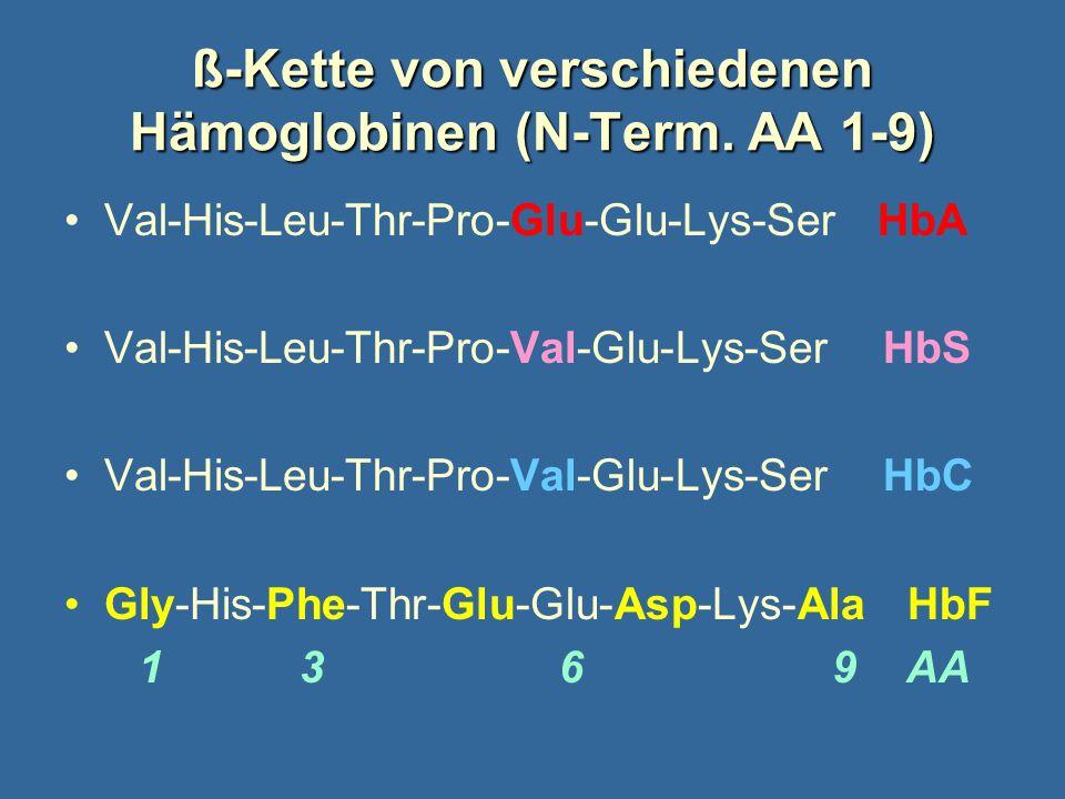 ß-Kette von verschiedenen Hämoglobinen (N-Term. AA 1-9)