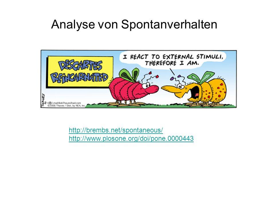 Analyse von Spontanverhalten