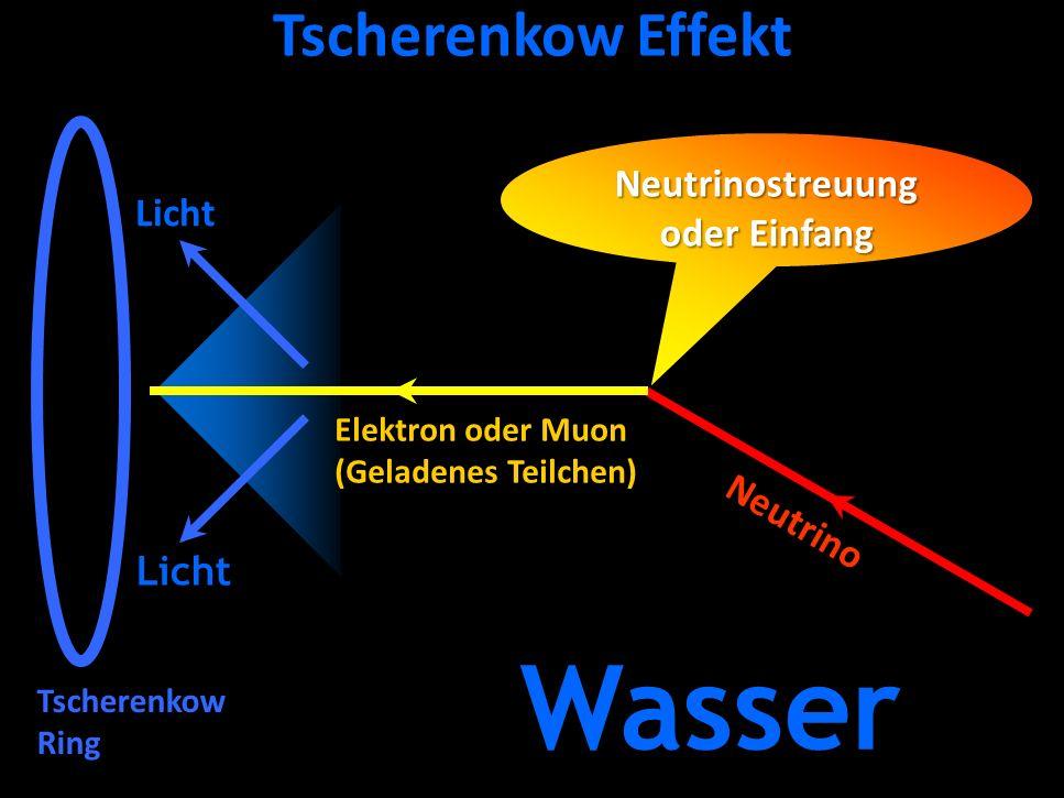 Neutrinostreuung oder Einfang