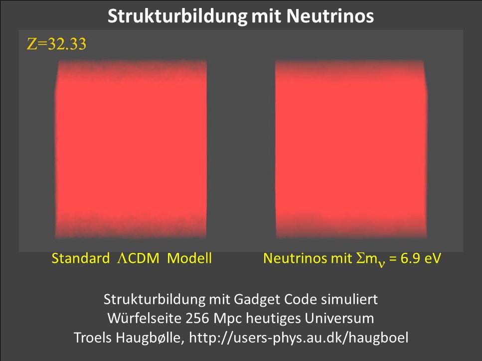 Strukturbildung mit Neutrinos