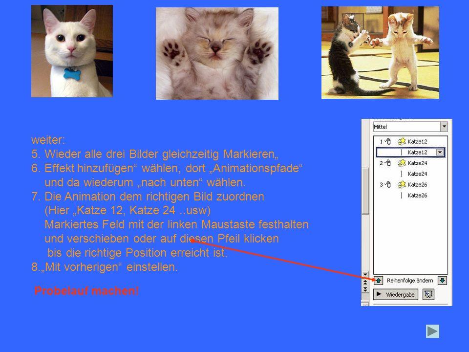 """weiter: 5. Wieder alle drei Bilder gleichzeitig Markieren"""" 6. Effekt hinzufügen wählen, dort """"Animationspfade"""