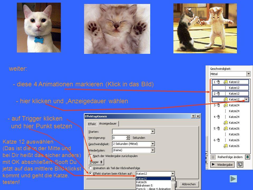 - diese 4 Animationen markieren (Klick in das Bild)
