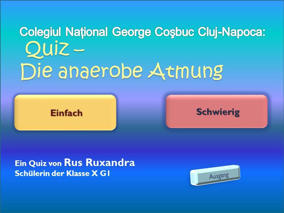 Colegiul Naţional George Coşbuc Cluj-Napoca: Quiz – Die anaerobe Atmung