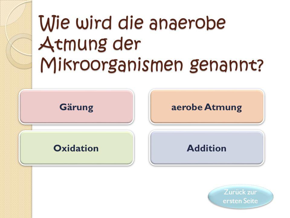 Wie wird die anaerobe Atmung der Mikroorganismen genannt