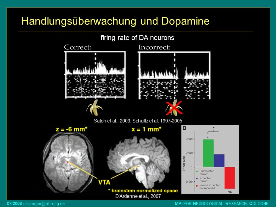 Handlungsüberwachung und Dopamine