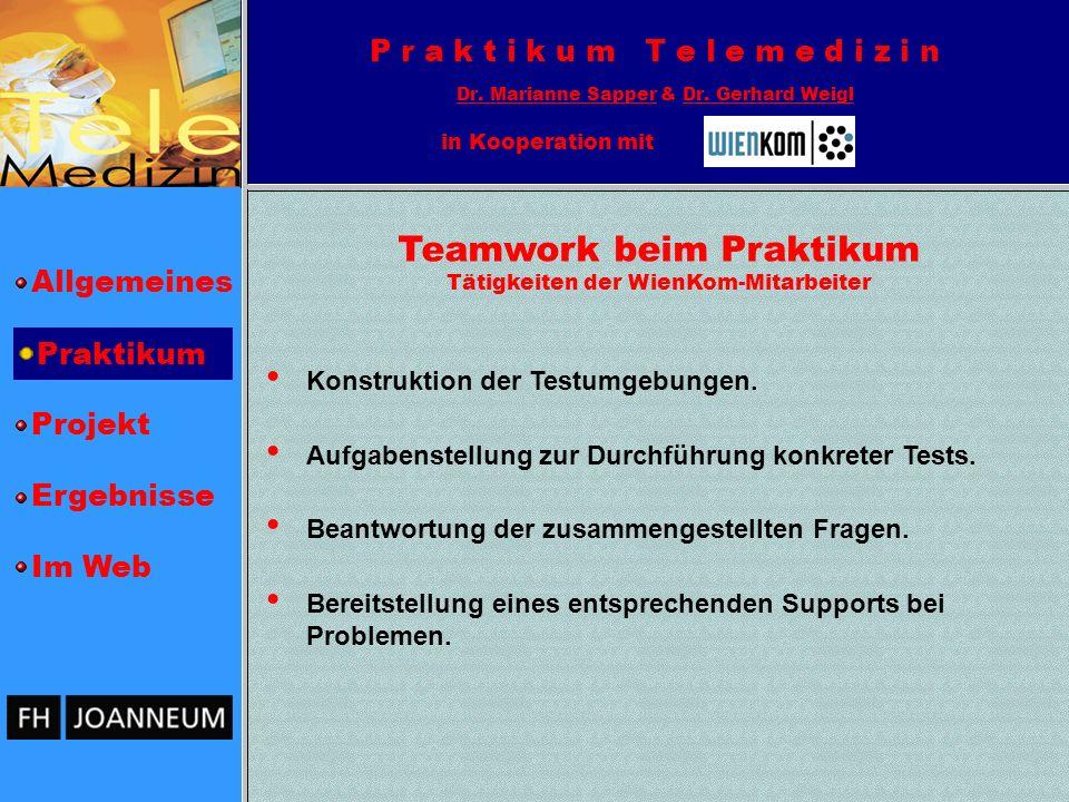 Teamwork beim Praktikum Tätigkeiten der WienKom-Mitarbeiter