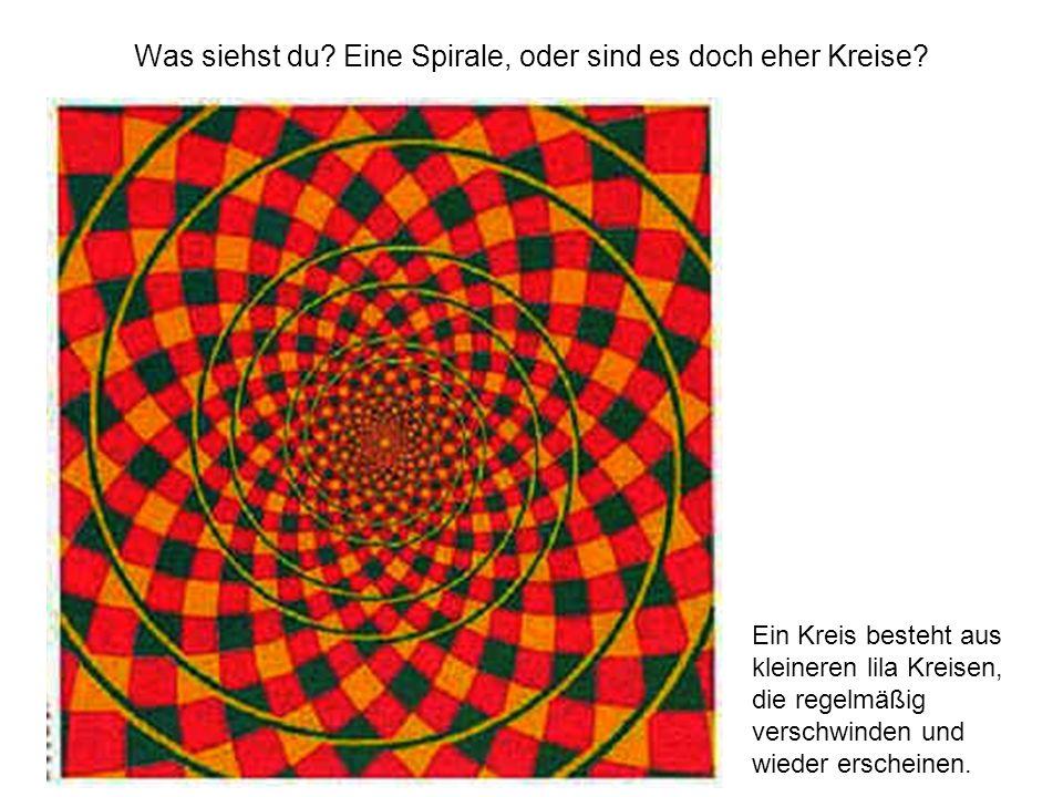 Was siehst du Eine Spirale, oder sind es doch eher Kreise