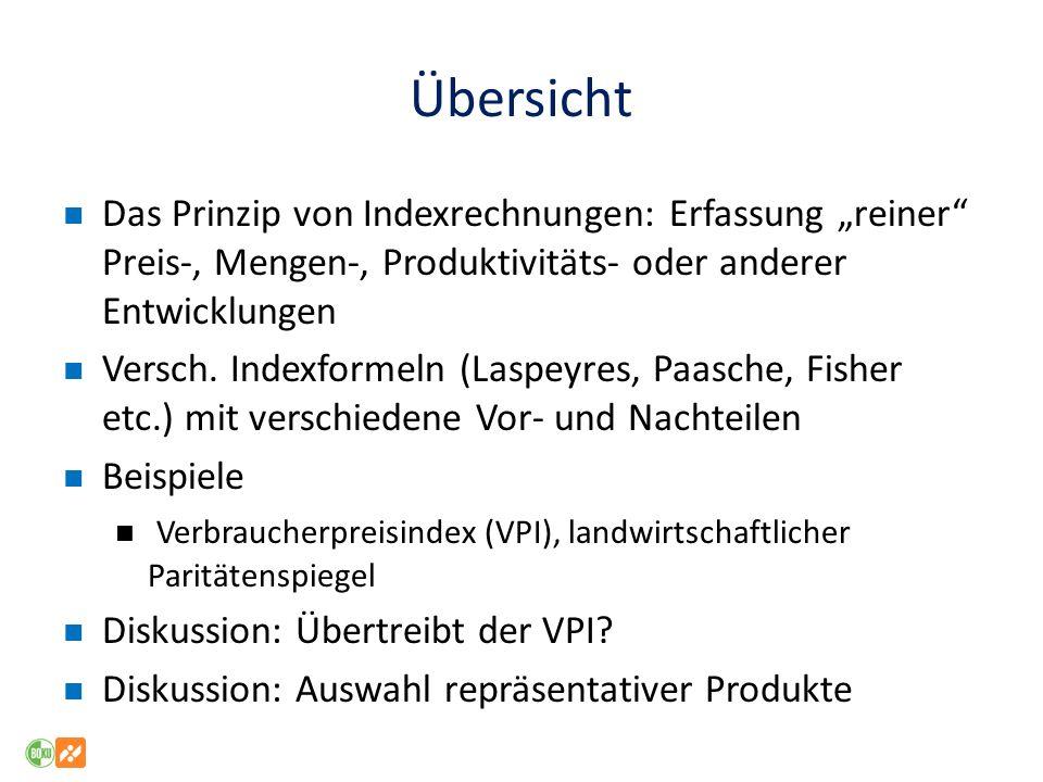 """Übersicht Das Prinzip von Indexrechnungen: Erfassung """"reiner Preis-, Mengen-, Produktivitäts- oder anderer Entwicklungen."""