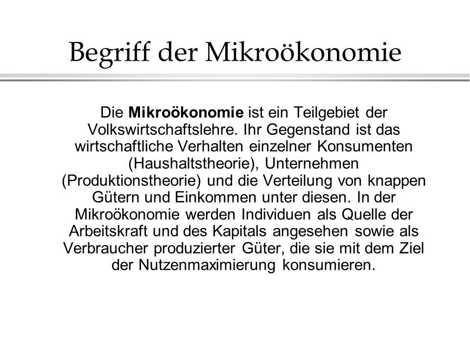 Begriff der Mikroökonomie