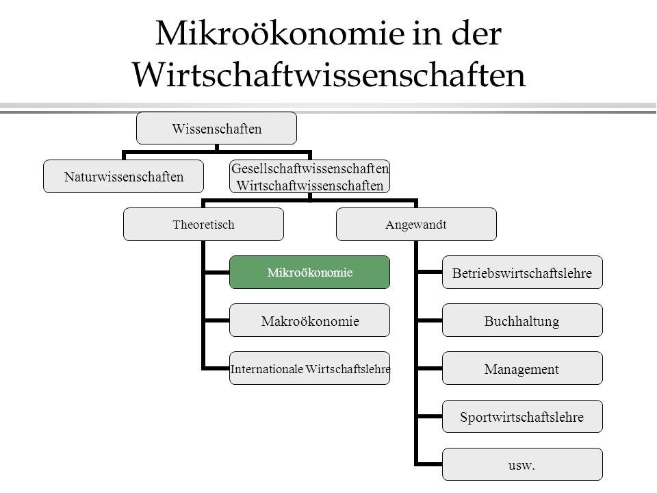 Mikroökonomie in der Wirtschaftwissenschaften