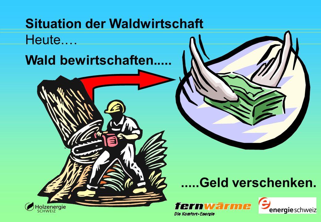 Situation der Waldwirtschaft Heute.…