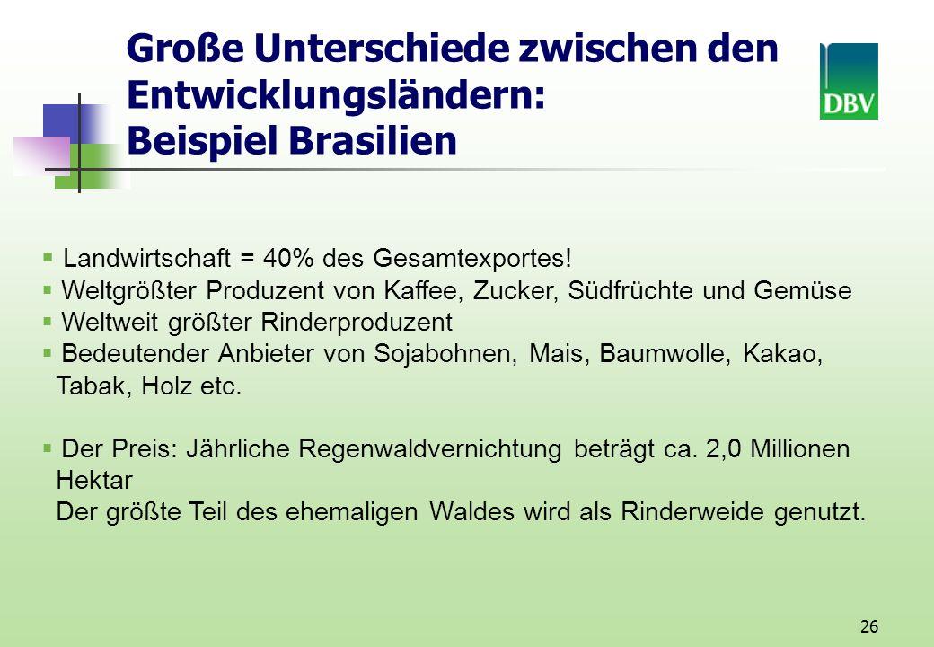 Große Unterschiede zwischen den Entwicklungsländern: Beispiel Brasilien