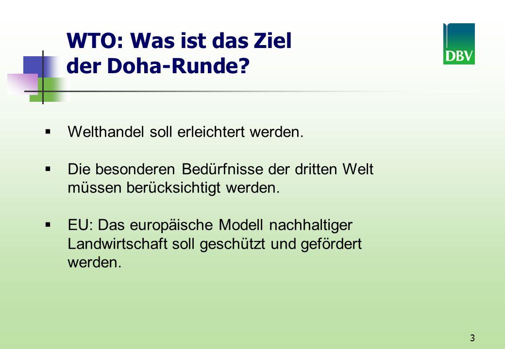 WTO: Was ist das Ziel der Doha-Runde