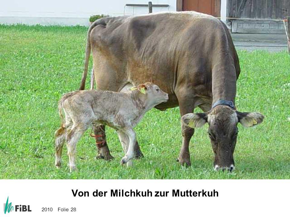 Bild: Von der Milchkuh zur Mutterkuh