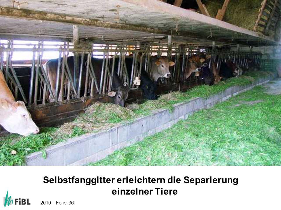 Bild: Selbstfanggitter erleichtern die Separierung einzelner Tiere