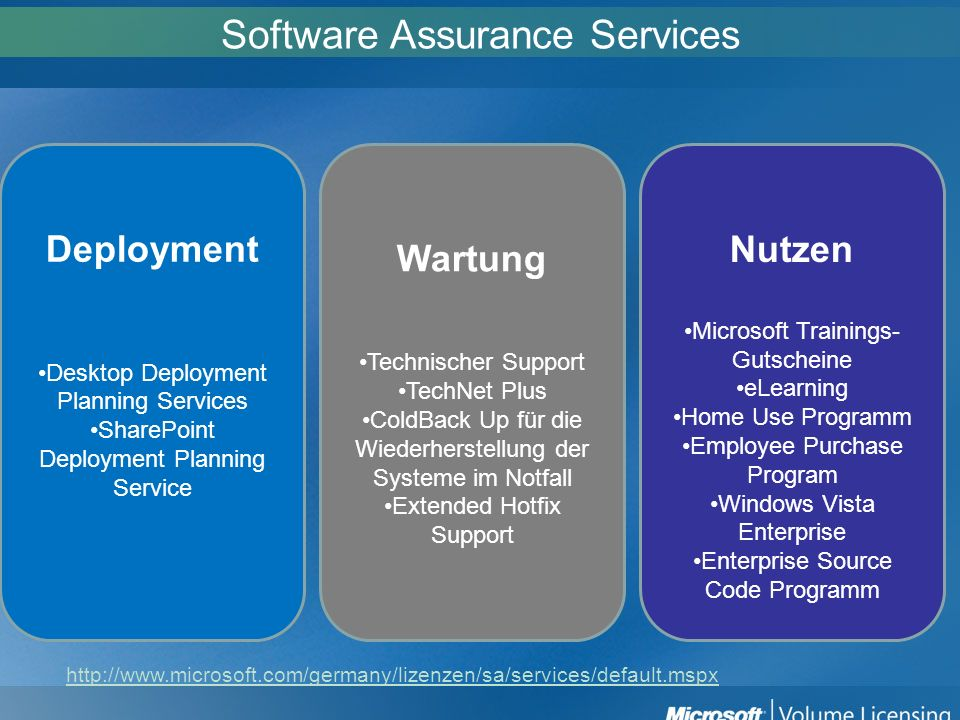 Software Assurance Services