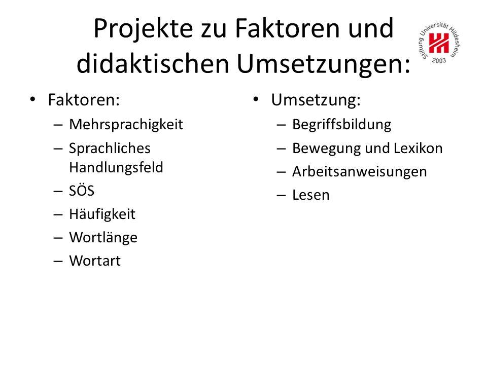 Projekte zu Faktoren und didaktischen Umsetzungen: