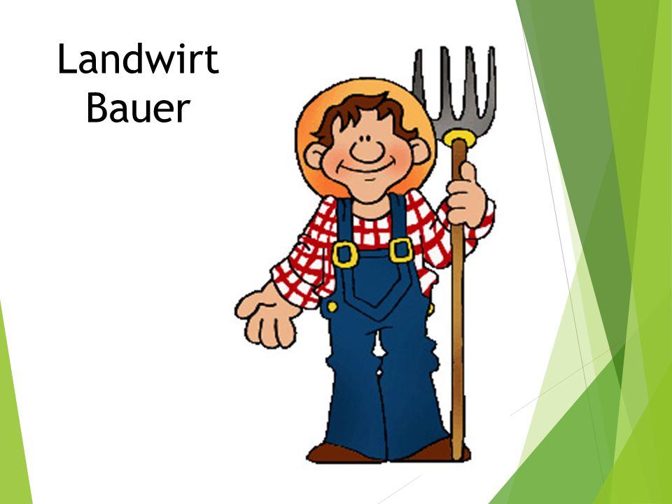 Landwirt Bauer