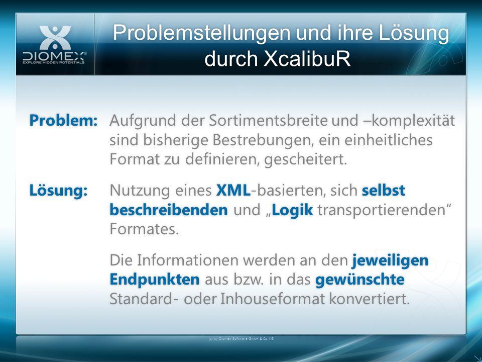 Problemstellungen und ihre Lösung durch XcalibuR