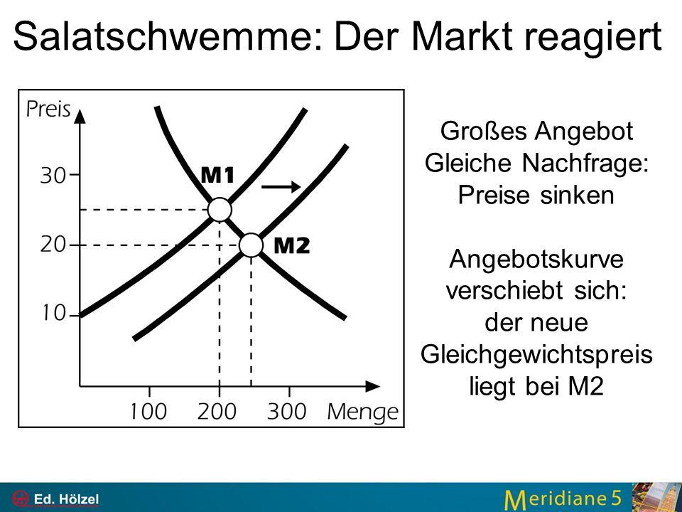 Salatschwemme: Der Markt reagiert