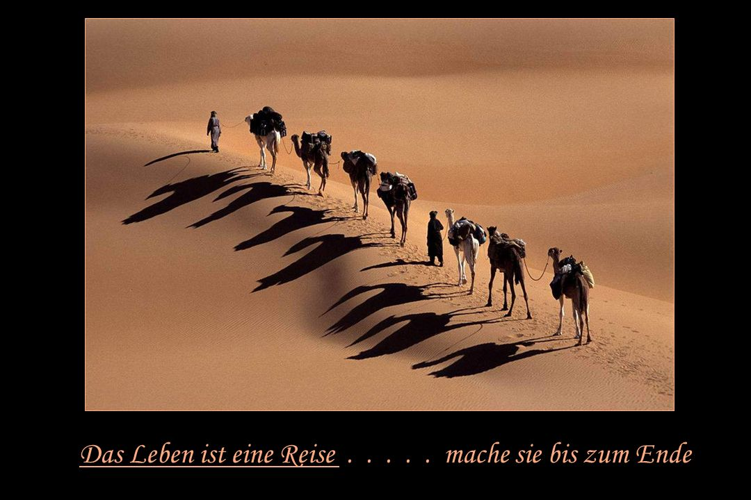 Das Leben ist eine Reise . . . . . mache sie bis zum Ende