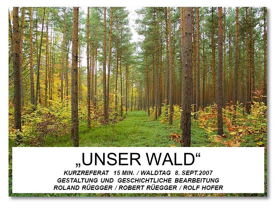 """""""UNSER WALD KURZREFERAT 15 MIN. / WALDTAG 8. SEPT"""