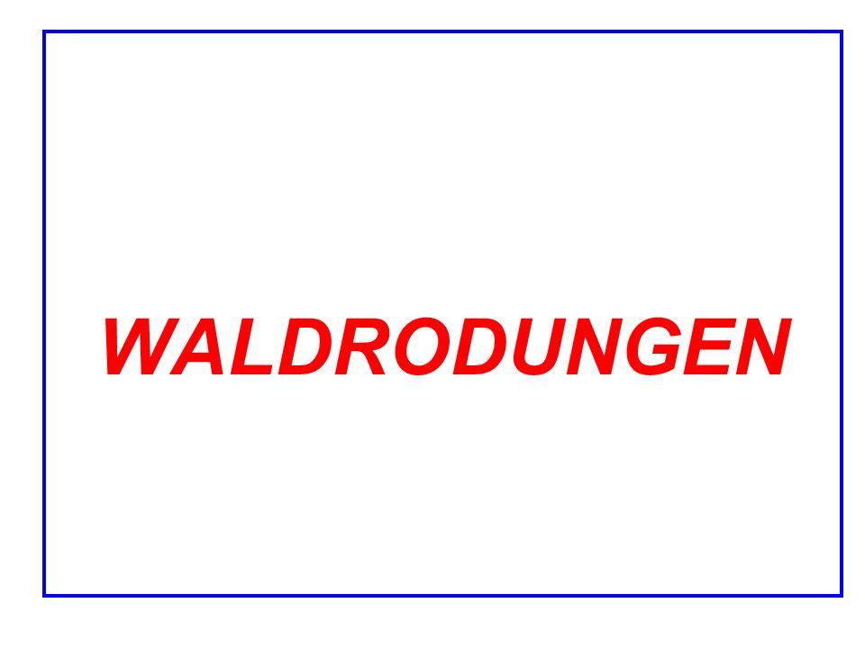 WALDRODUNGEN