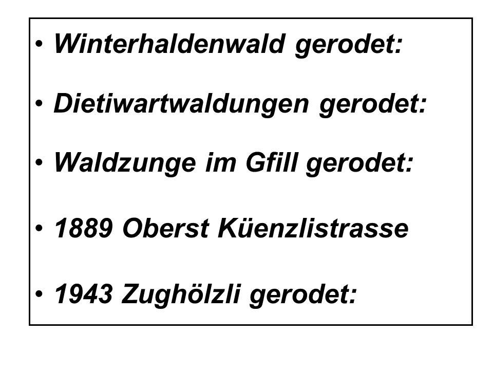 Winterhaldenwald gerodet: