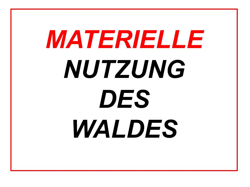 MATERIELLE NUTZUNG DES WALDES