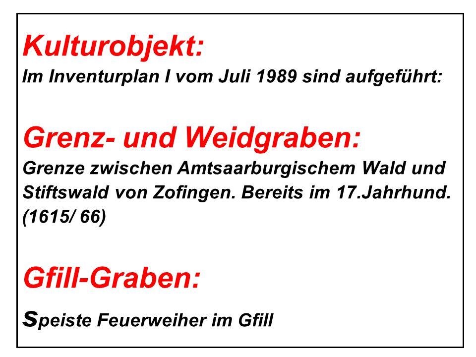 Grenz- und Weidgraben: