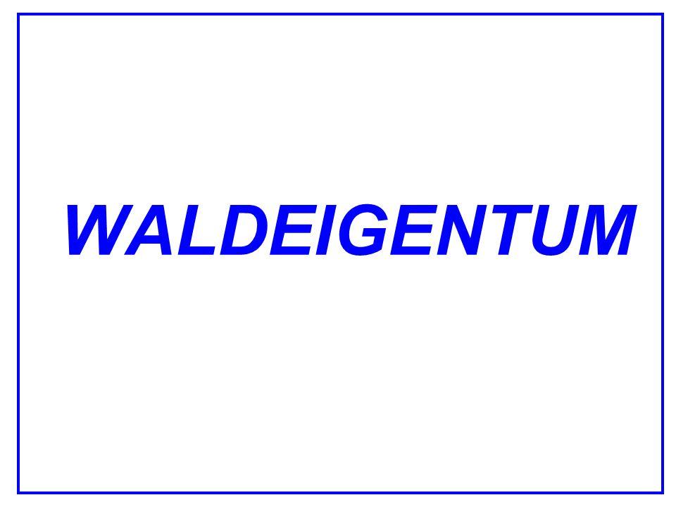 WALDEIGENTUM