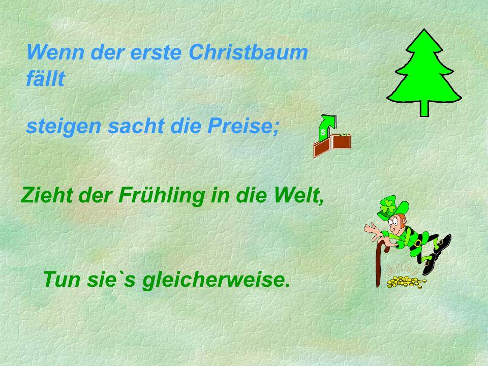 Wenn der erste Christbaum fällt