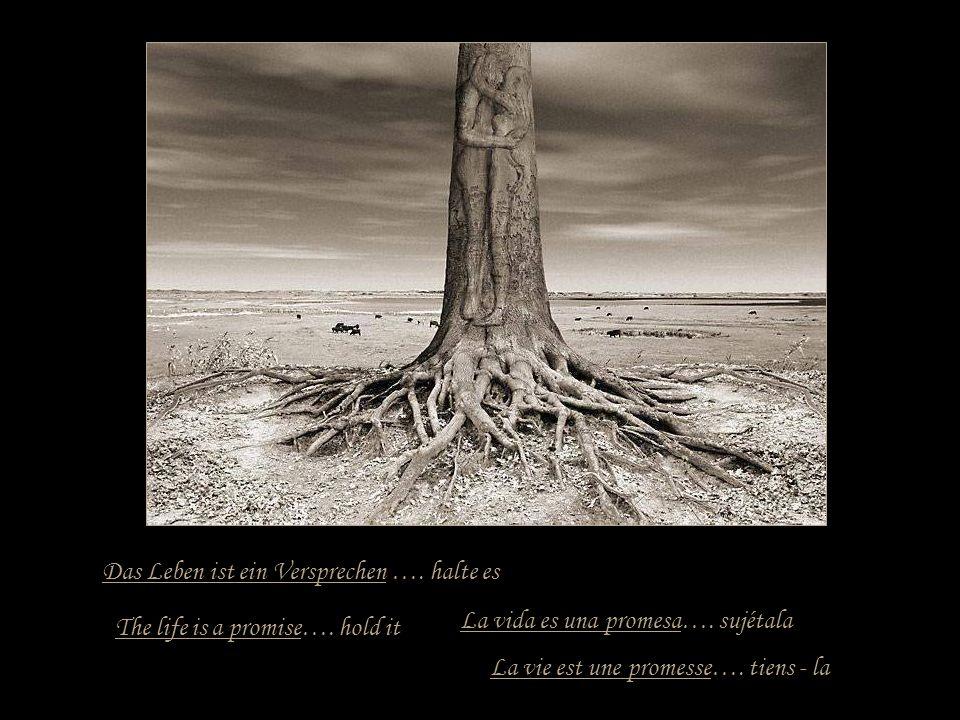 Das Leben ist ein Versprechen …. halte es