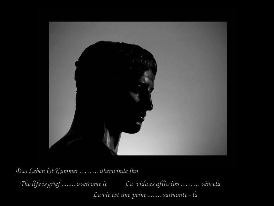 Das Leben ist Kummer …….. überwinde ihn