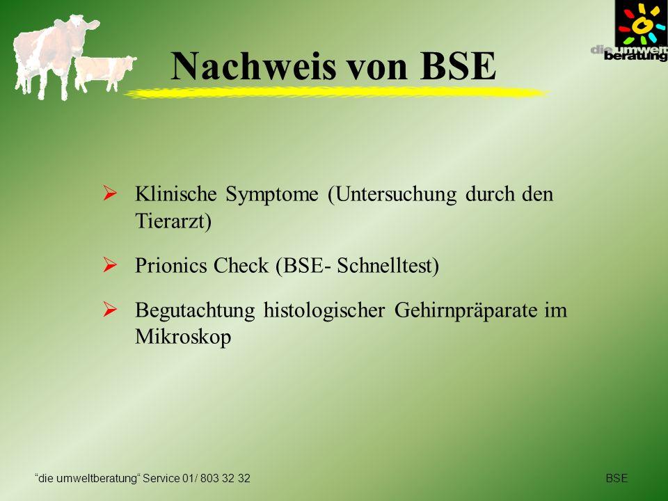 Nachweis von BSE Klinische Symptome (Untersuchung durch den Tierarzt)