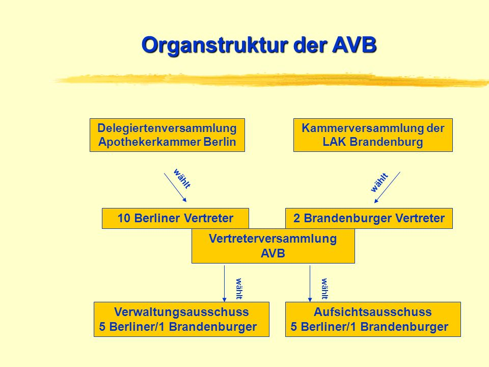 Organstruktur der AVB 10 Berliner Vertreter 2 Brandenburger Vertreter
